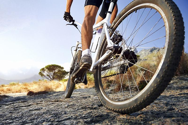 Things to do – Mountain Biking