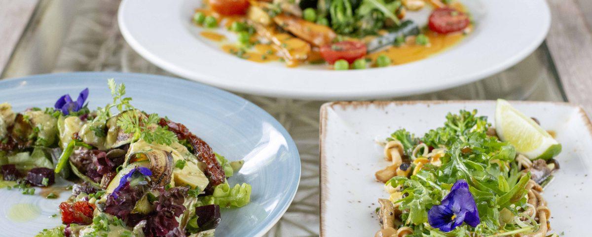 Flavourful Vegan & Vegetarian Menus at Bistro Sixteen82