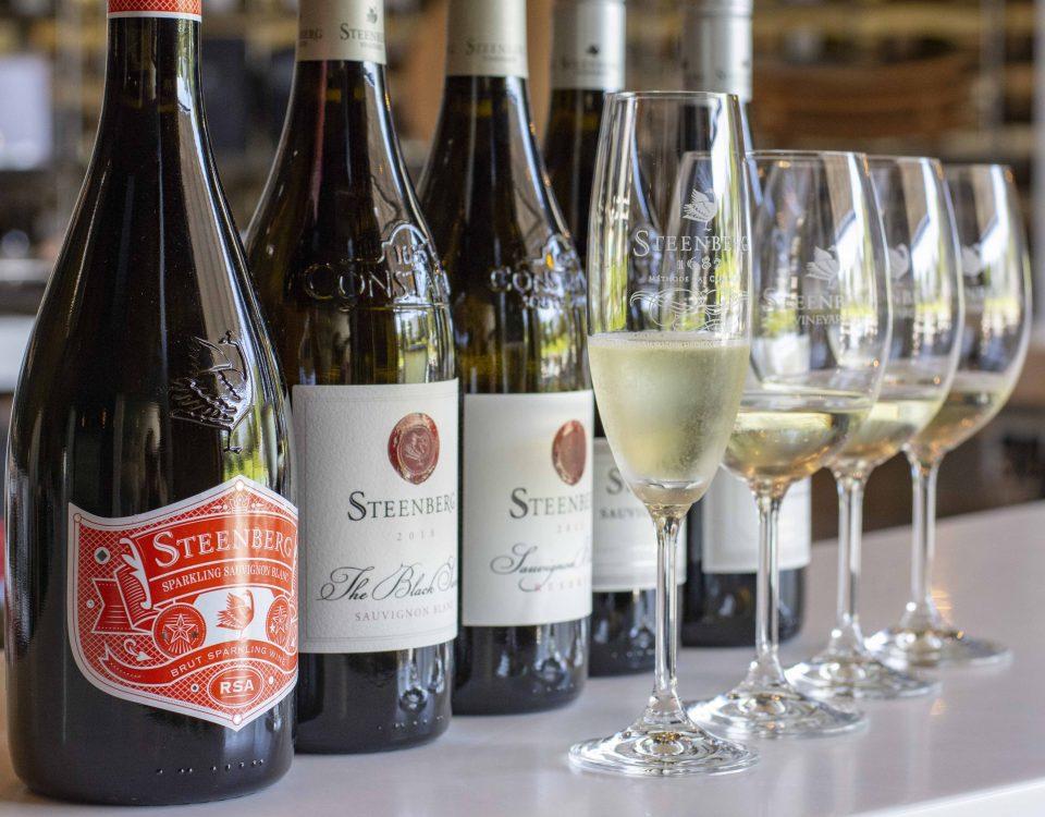International Sauvignon Blanc Day at Steenberg